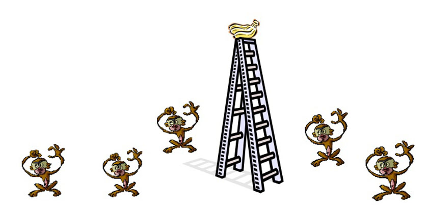 5_monkeys
