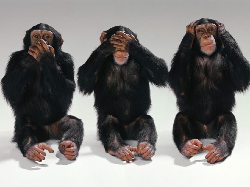 Three_monkeys-small
